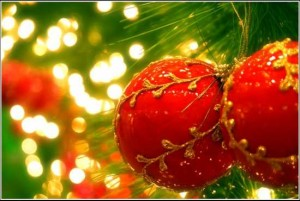 Стоян Найденов: Коледа 1